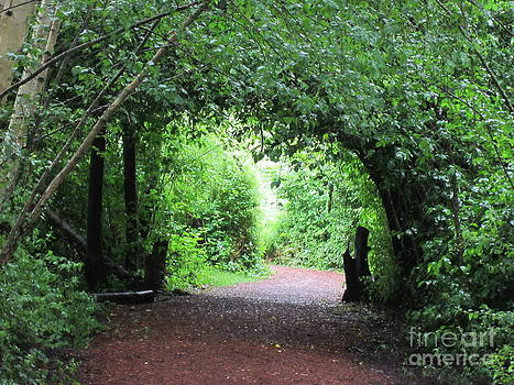 Arched Pathway by Melissa Stinson-Borg