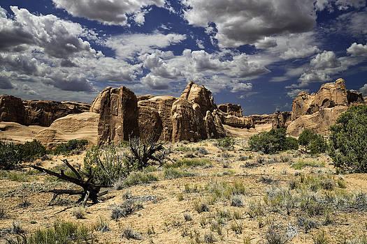 Arches National Park by Steve Bingham