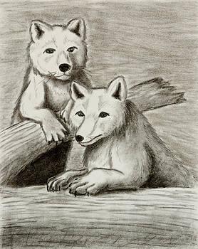 Jeanette K - Arctic Fox