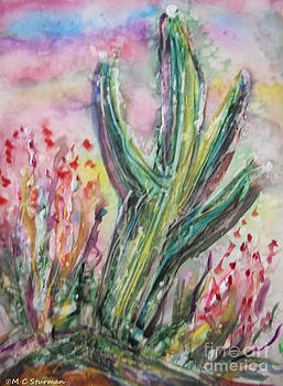 Arizona Desert by M C Sturman