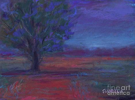 ARIZONA Sunset by Joyce A Guariglia