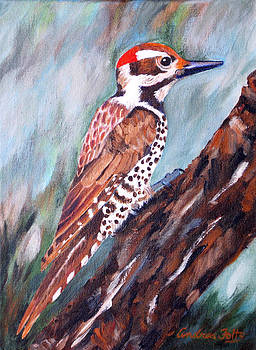 Brown-Backed Woodpecker by Andrea Folts
