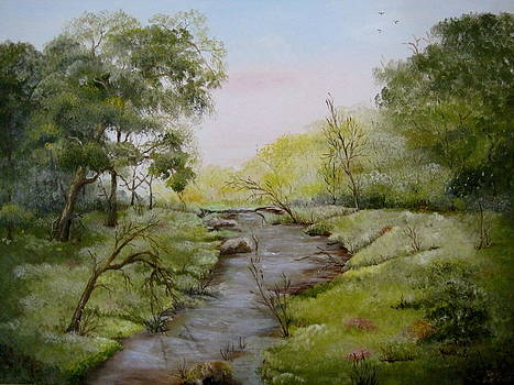 Arkansas Natural by Martha Efurd