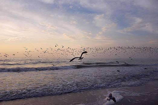 Around The Beach by Lorenzo Cassina