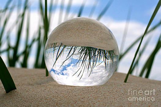 Around The Beach by Ste Flei