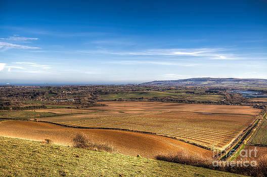 English Landscapes - Arreton Down