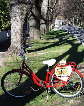 Arrowtown Bike Hire by Therese Alcorn