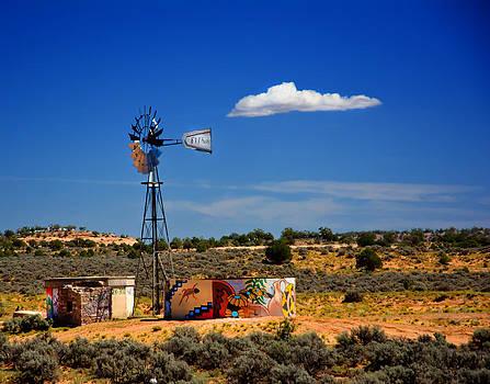 Randall Branham - Artist water Tank Windmill