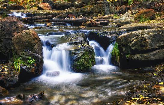 Saija  Lehtonen - As The Water Flows