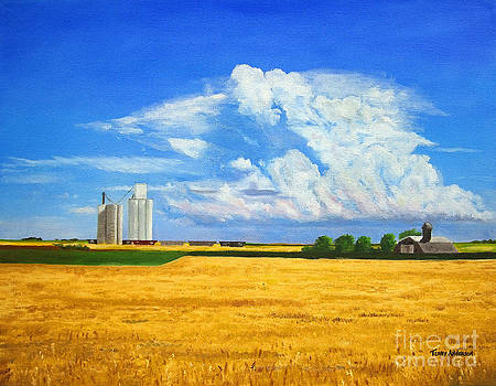 Ascending Cloud by Terry Anderson