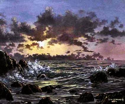 Asilomar by Lynne Wright