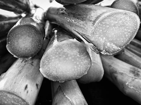 Asparagus by Dorin Stef