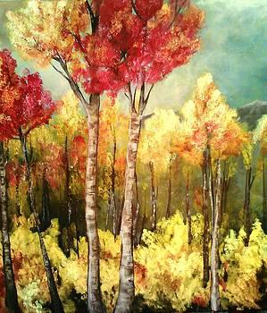 Aspen Fire by Christine Maeda