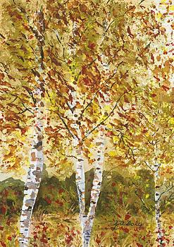Aspen Grove by Jo Ann Daly