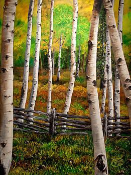 Aspen Meadow by Jessica Tookey