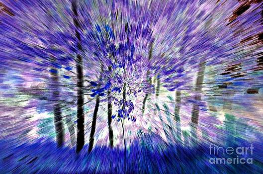 Randy J Heath - aspen trees abstract