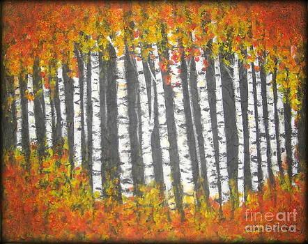 Aspen trees by Elena  Constantinescu