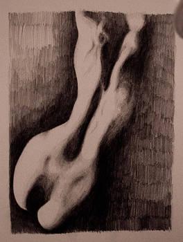 Ass 2 by Adina Bubulina