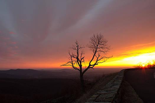 At First Light by Everett Houser