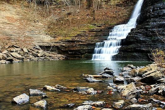 At the Falls by Alina Skye