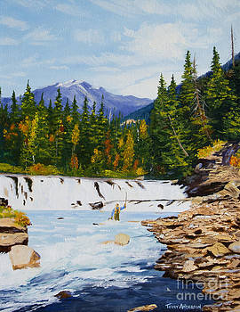 At the Falls by Terry Anderson
