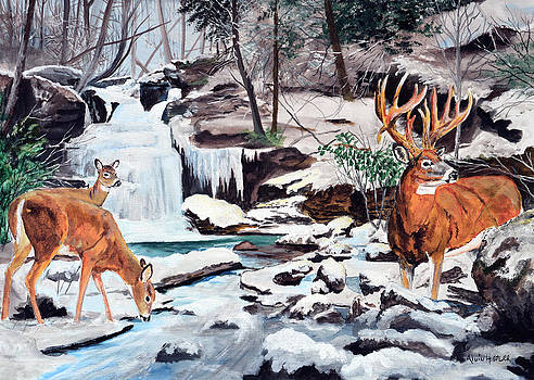 At The Falls - Whitetail  by Alvin Hepler