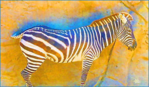 At the Zoo - Zebras by Douglas MooreZart