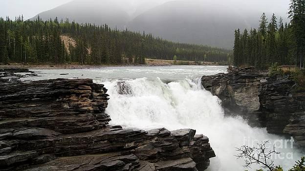 Gail Matthews - Athabasca River to the Falls