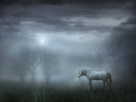 Atmospheric Night by Jennifer Woodward