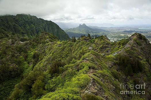 Charmian Vistaunet - Atop Koolau Mountains