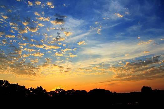August East Texas Morning by Lorri Crossno