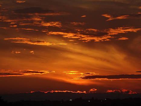 August Sunset by Barbara Harris