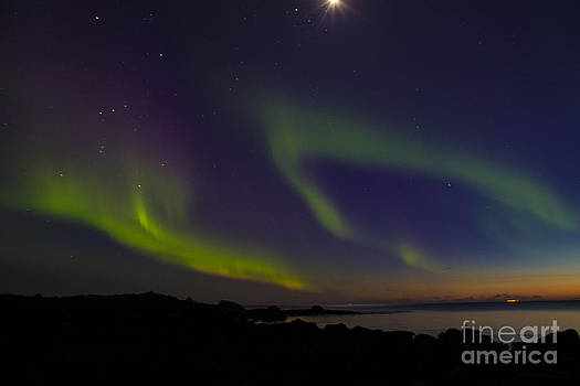 Aureo Borealis In Iceland by Kristofer Mani Axelsson