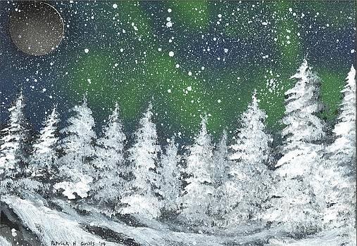 Aurora Borealis by Patrick Grills