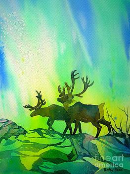 Aurora Caribou by Betsy Bear