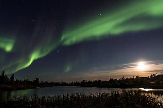 Aurora in the Moonlight by Valerie Pond