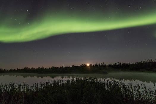 Aurora Light by Valerie Pond