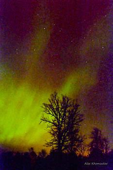Aurora Northern Lights by Alex Khomoutov