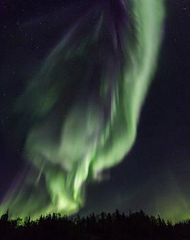 Aurora Twist by Valerie Pond