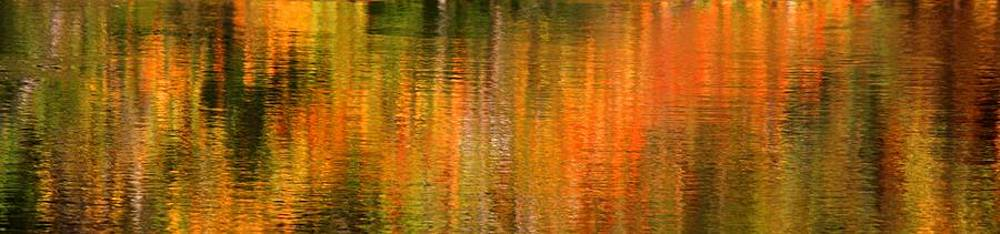 Autumn Abstract 3 by Matthew Grice