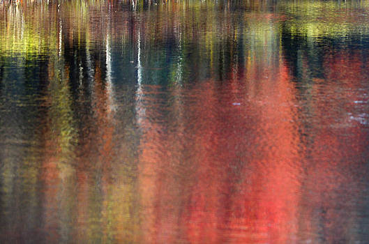 Autumn Abstract by Jeff Rose