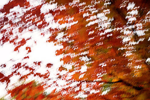 Autumn Abstract by Katina Borges