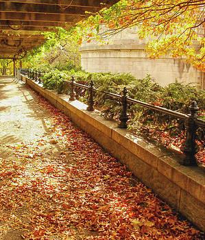 Autumn Afternoon by Vivienne Gucwa