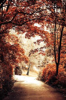 Jenny Rainbow - Autumn Alley