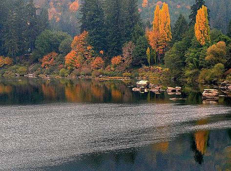 Autumn Along the Umpqua by Suzy Piatt