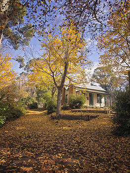 Autumn at Daylesford by Kim Andelkovic