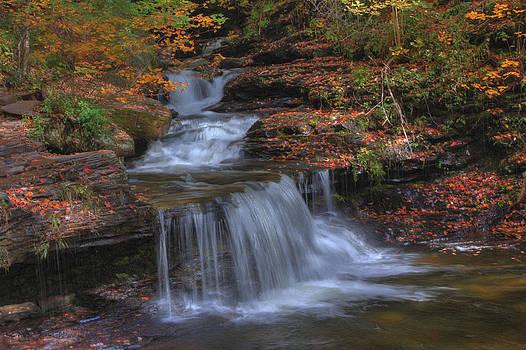 Autumn at Ricketts Glen by Sharon Batdorf