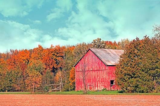 Autumn Beauty by Cheryl Cencich