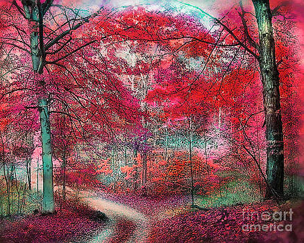 Autumn Beeches by Gina Signore