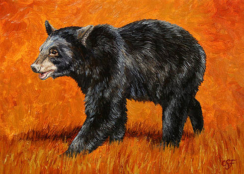 Crista Forest - Autumn Black Bear